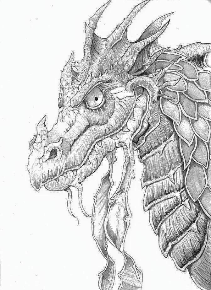 99 best Adult Coloring Pages Dragons images on Pinterest Coloring - best of coloring pages of ice dragons