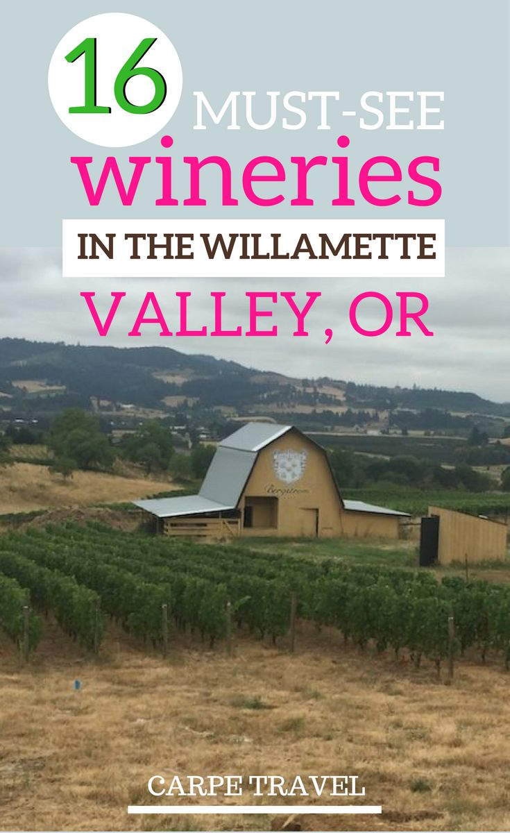 16 fabulous Willamette Valley, Oregon, wineries that you cannot miss. Check out why these wineries should be on your Oregon itinerary.  | Oregon wineries | Willamette Valley wineries | Oregon wine country | Oregon travel guide | Willamette Valley vineyard #willamettevalley #WineCountry #oregon via @elainschoch