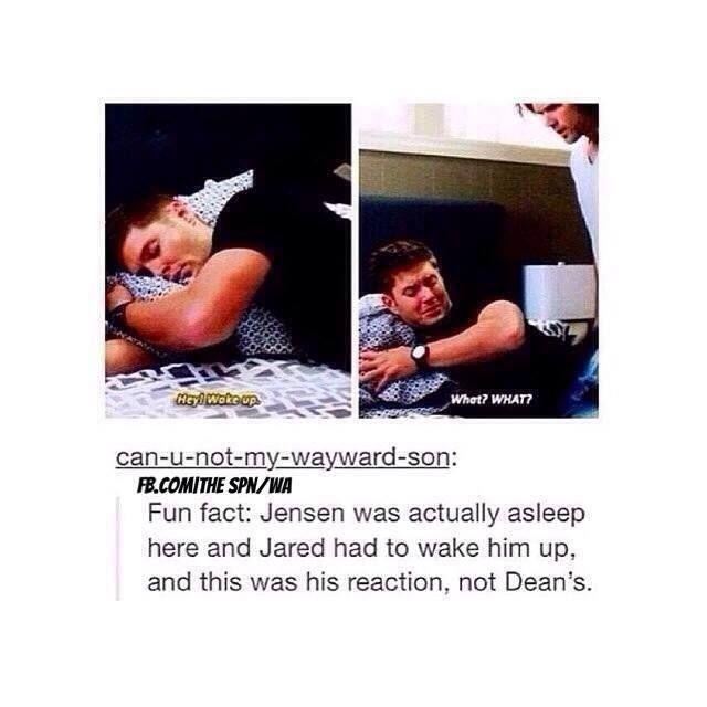Jensen's reaction on being woken up. Lol.