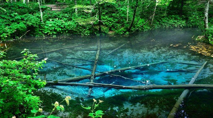 神秘の水で結ばれた2つの希少スポット「神の子池」と「裏摩周展望台」 | taVip~タビップ~【るるぶトラベル】で宿泊予約