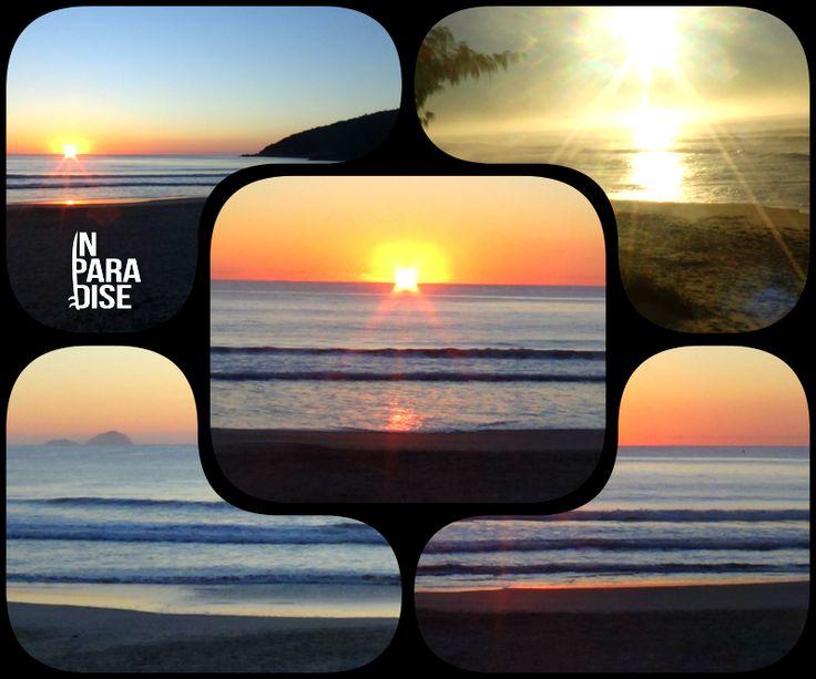 1ª Edição Boletim das Ondas In Paradise no ar! - In Paradise