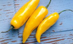 """Deep fried banana peppers. TLC Cooking """"5 Creative Ways to Use Banana Peppers"""""""