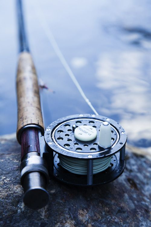 fly fishingHunting Fish, Old Schools, Gone Fish, Fishing Rods, Trout Fish, Fly Fish, Fish Pole, Summer Life, Fish Rods