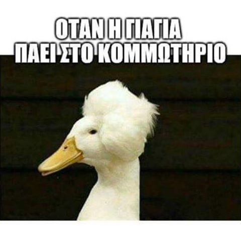 #greek_funny_quotes #greekpost #greekquotes