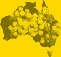 Wattle, The Commonwealth Floral Emblem