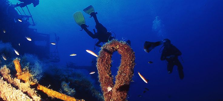 Diving Club ecosostenibile Sicilia:Altamarea