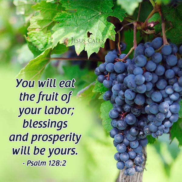 Image result for psalm 128:2