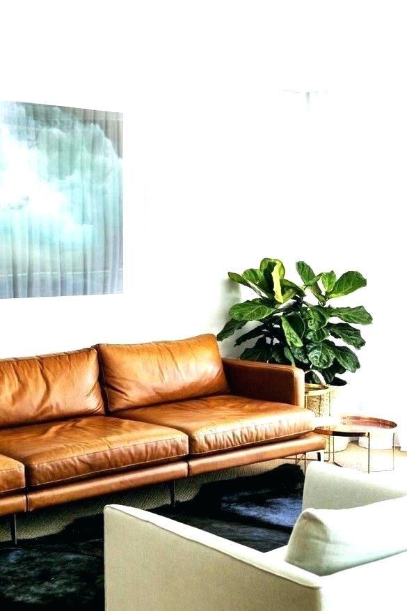 Attractive Leather Sofa Living Room Pinterest Photographs Leather Sofa Living Room Pinterest And Brown Leather Sofa Leather Sofa In A Modern Living Room Dark B