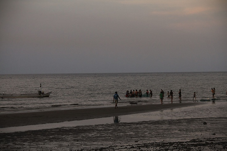 On a bright Pemuteran afternoon, fishermen throw the fishing net near the shores and collectively pull it to the beach.