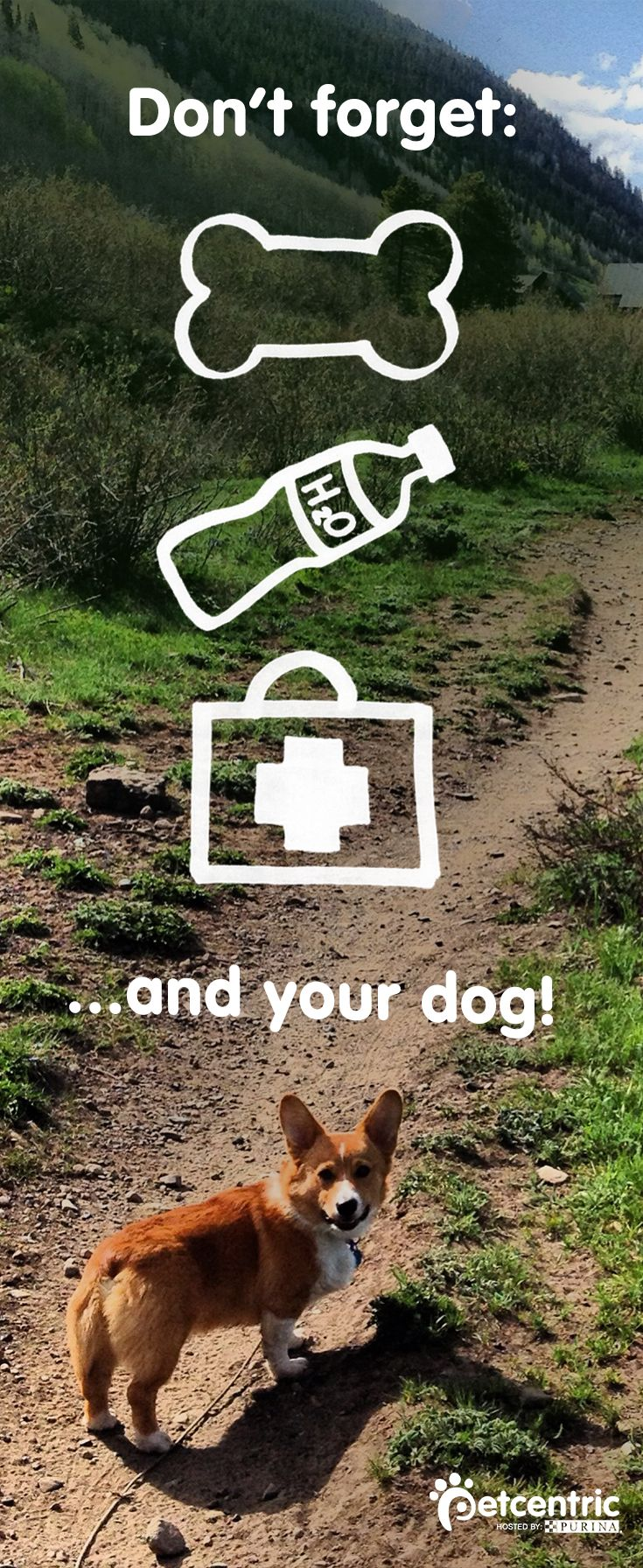 If you and your dog are planning on hiking this Spring, be sure to bring water, a first aid kid and plenty of treats! Head over to  Petcentric.com for other hiking and outdoor activity tips.