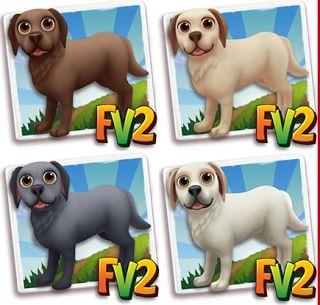 L'Oasi nel Deserto: Trucco Farmville2: Come avere il labrador