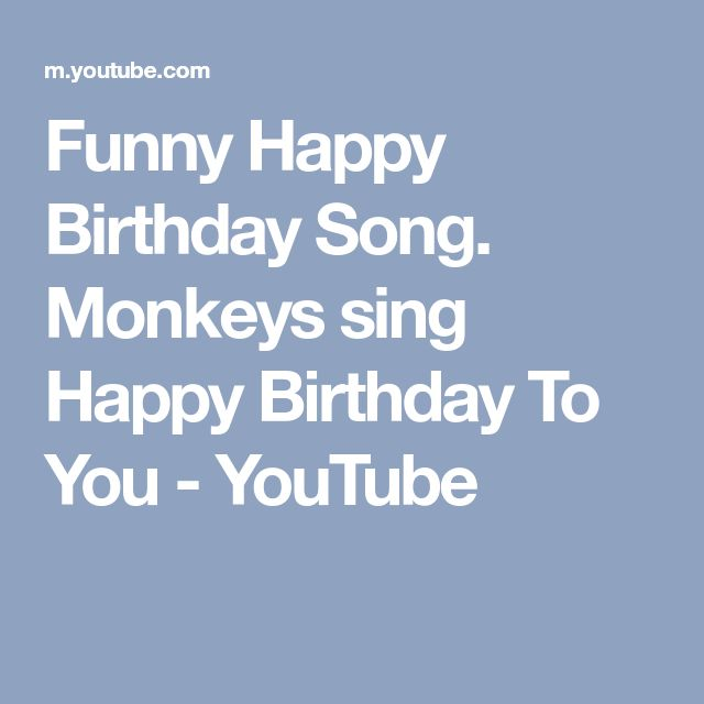 Best 25 Funny Birthday Sayings Ideas On Pinterest: Best 25+ Funny Happy Birthdays Ideas On Pinterest