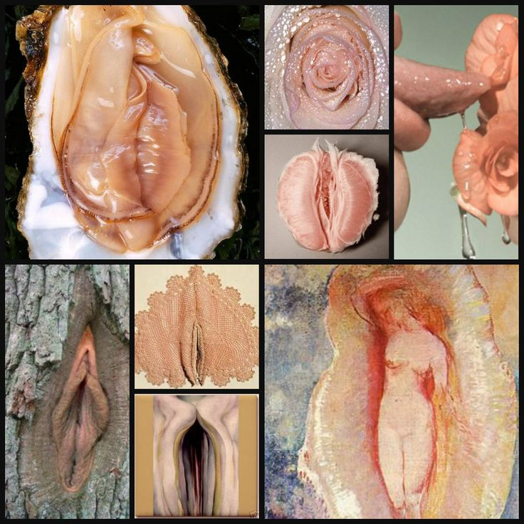Vagina collage by Pearl