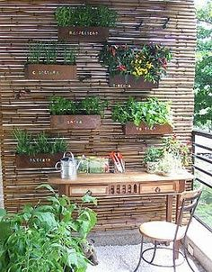 Sturdy blind with planter boxes attached.  Great Vertical Gardens - Great Choice for Small Yards and balconies - The Gardening Cook