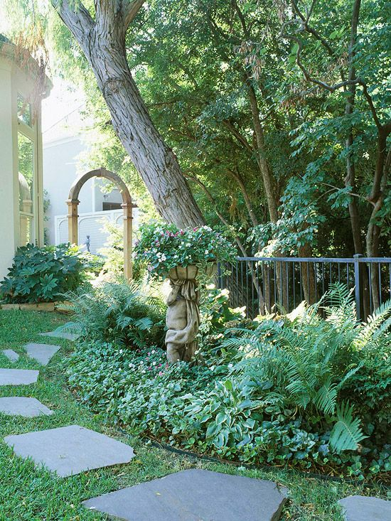 Full Garden In Backyard: Full Shade Garden Ideas Photograph