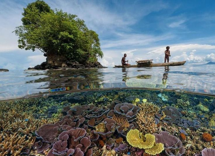 Fishermen in outrigger canoe, Papua New Guinea Photograph by David Doubilet A garden of delicate coral is sheltered from storms in the lee of a nearby peninsula. Kimbe's reefs help sustain local fishermen, some of whom still rely on traditional outrigger canoes.