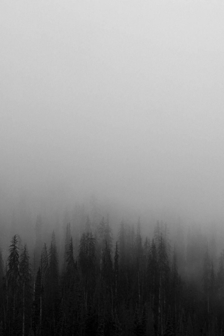 Best 25 Creepy Fog Ideas On Pinterest Landscape In The