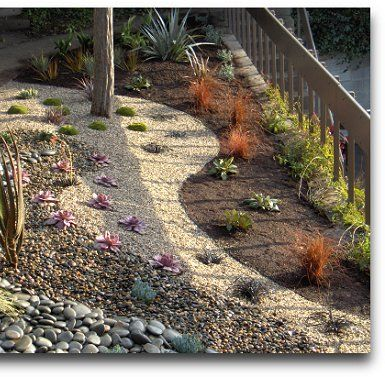 15 best pebble garden images on Pinterest | Landscaping ideas, Dry Planting Design Gardens Dry on modern planting design, drought tolerant landscape design, planting a garden,