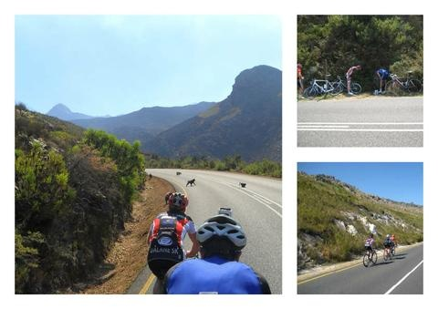 Cape Town Road cycling Holiday - iRideAfrica
