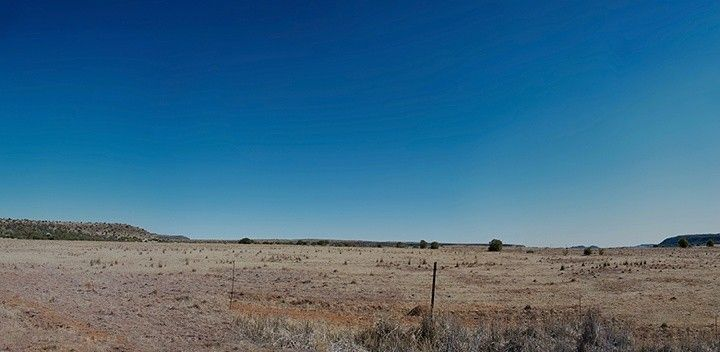 goose hill, bloemfontein