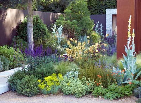 Законы создания красивых и неприхотливых цветников