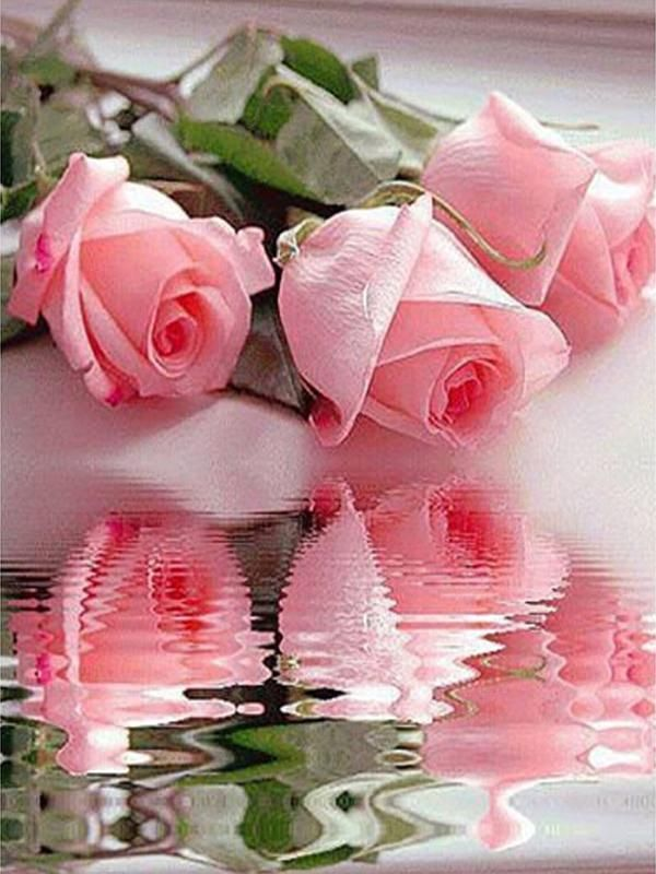 The water rose pink picture home decor 5ddiy diamond Painting diamond mosaic gift cross stitch Full diamond embroidery #>=#>=#>=#>=#> Click on the pin to check out discount price, color, size, shipping, etc. Save and like it!