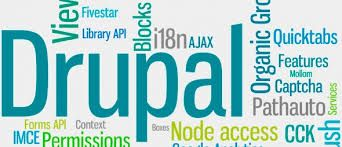 Drupal is the CMS with a well-built framework. It has all the requisite in-built features from search to security. Drupal is evolving with new modules being contributed to its architecture. At SSCSWORLD, our Drupal development team leverages those modules to the max in order to develop a social networking platform or an ecommerce portal at reasonable costs.
