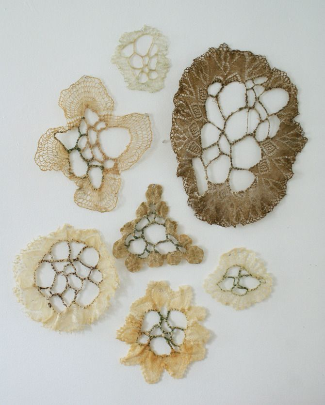 studies in manipulating doilies using thread and wax, referencing natural patterns found in coral reefs
