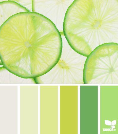 Différentes nuances de vert pour le salon http://www.m-habitat.fr/tendances-et-couleurs/couleurs-deco/bien-choisir-et-combiner-les-couleurs-dans-une-maison-2930_A #vert #zen #couleur