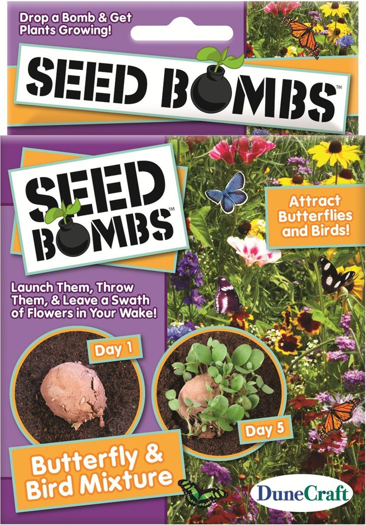 Seed Bombs - Butterfly and Birds Mixture 6 Seed Bombs! Contains mix of flowers that will attract butterflies and hummingbirds by DuneCraft Made in USA Time Lapse Video of Seed Bombs in Action Drop a b