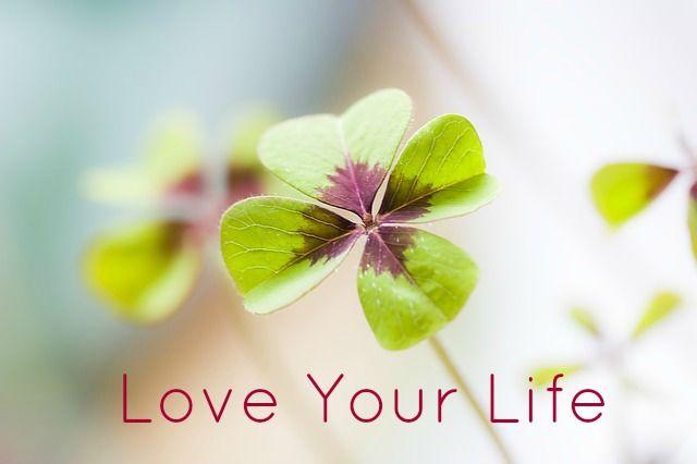 Het Love-Your-Life programma biedt jou vijf coachgesprekken van 1 uur. Persoonlijke coaching door een zeer ervaren coach.