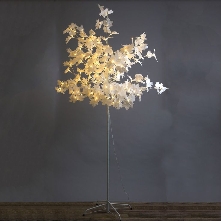 Florabelle - Light Up Maple Tree | Peter's of Kensington