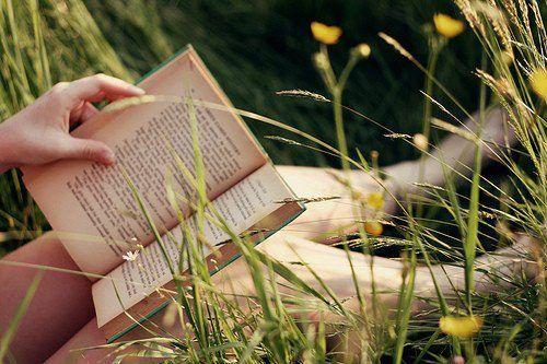 Fomentar la lectura, entender su trascendencia en el ser , es labor de todos quienes nos vinculamos estrechamente con la literatura.