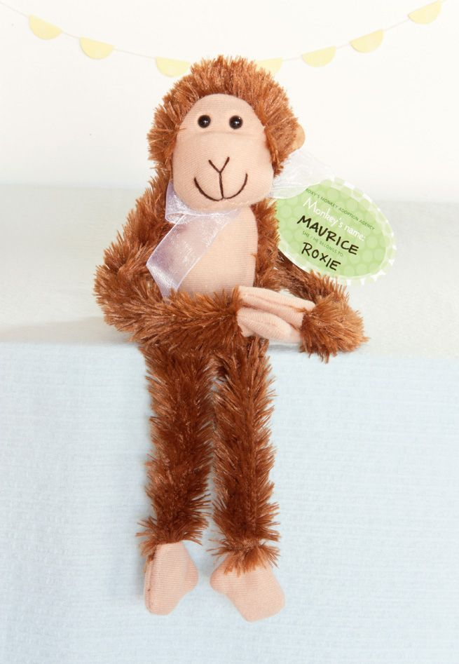 Adopt A Monkey Party Favors — My Own Ideas