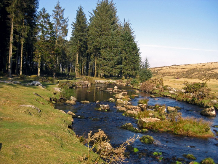Bellever Forest, Dartmoor National Park- the most beautiful picnic spot, great for playing in the river.