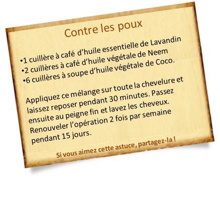 anti poux naturel lotion huiles végétales