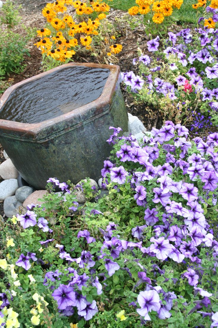 35 best colorado landscaping images on pinterest garden ideas water feature surrounded by flowers in colorado springs dhlflorist Choice Image