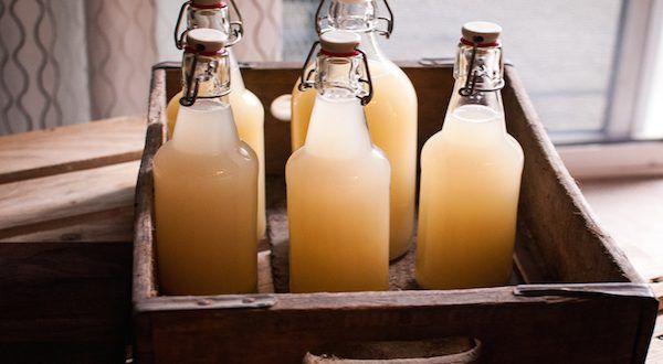 make ginger beer