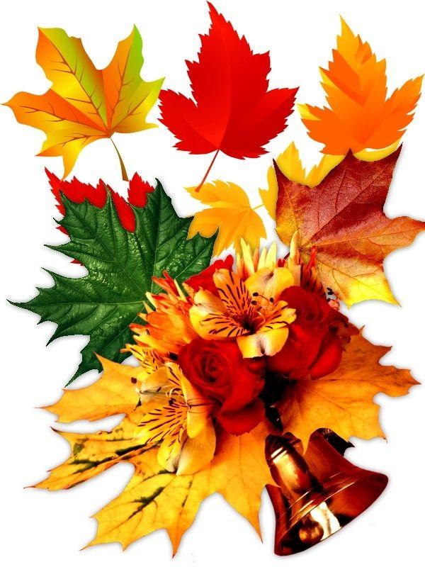 Осенние листья в открытках