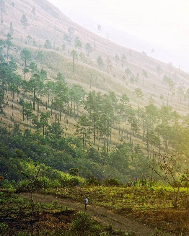 Gunung Guntur, salah satu dari tiga serangkai pegunungan di Bumi Pangirutan✌ . . Regram dari @prakosoumam,terima kasih telah menandai kita,keep discover Garut The Preanger Paradise.  Selalu jaga dan lindungi tempat ini saat anda berkunjung,always be a #ResponsibleTraveller.  Lokasi Gunung Guntur Kabupaten Garut. . Untuk informasi lebih jelas mengenai informasi pariwisata Garut kunjungi kami di  www.jelajahgarut.com.  #JelajahGarut #ExploreGarut #WisataGRT #Guntur #mountain #Jawabarat…
