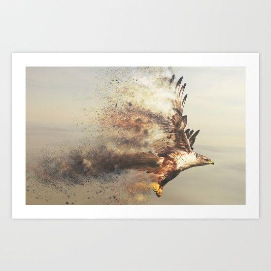 Stormhawk - $14.56