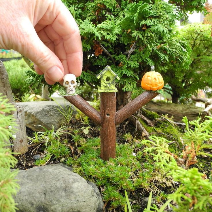 281 best Mini Garden Design Ideas images on Pinterest Mini