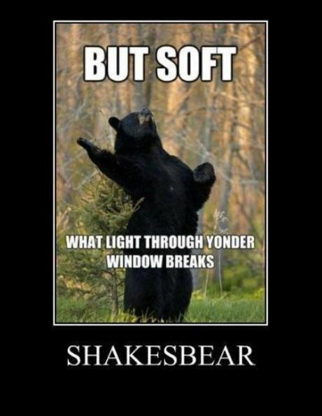 Shakesbear.: Funny Pictures, Bears, Giggl, Funny Stuff, Hilarious, Smile, Laughter, Shakespeare, Animal