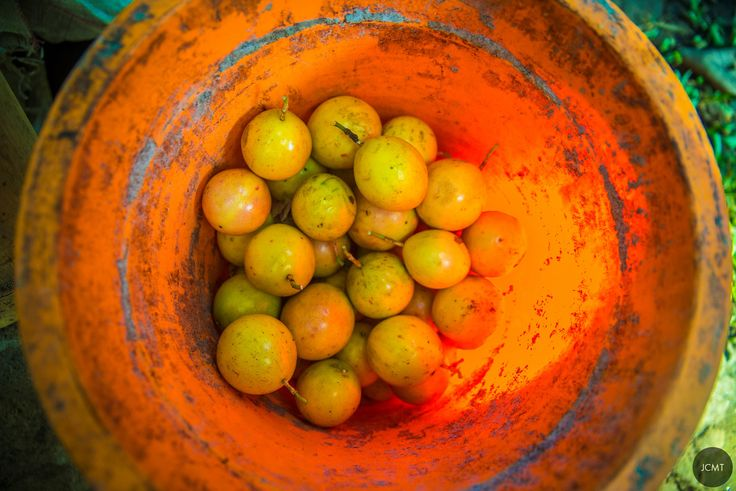 Ubud, Fruits, Bali, by JCMT agency