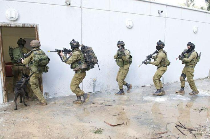 Unidad Oketz IDF