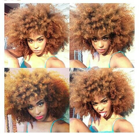 curls natural afro hair hairstyle almond colored