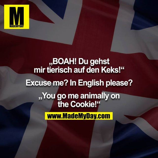 """BOAH! Du gehst mir tierisch auf den Keks!""  Excuse me? In English please?  …"