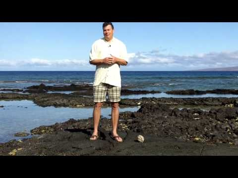 Mark Smith Testimonial for Derral Eves and Brian Anderson. While standing on the beautiful coast of Hawaii Dr Mark Smith tells of his experiences working with Derral Eves and Brian Anderson. Derral is a SEO Professional and he loves to share his knowledge of social media marketing, mobile marketing, internet marketing, and video marketing.  An area that is fairly new!  derraleves.com
