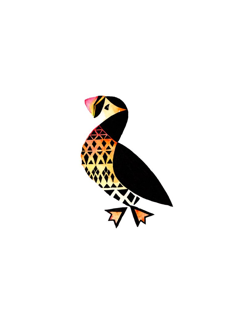 Puffin Illustration Artprint Arkwork Animal