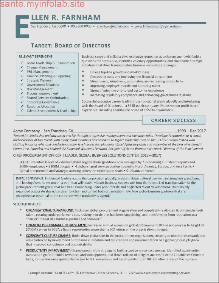 Example board of directors executive resume pg 1